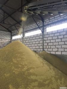 Продам соевый жмых (макуху) от 20 т