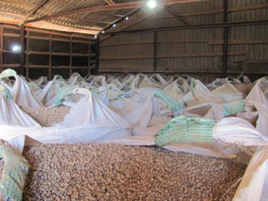 Продаю древесные хвойные пеллеты 8 мм в Чернигове