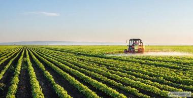 Агрохімікати та пестициди: гербіциди, фунгіциди, інсектициди