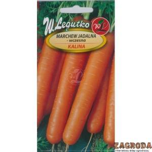 Насіння моркви сортотипу Каротель