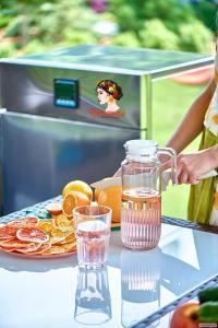 «Фрукториана» быстрая ик-сушилка для фруктов и овощей