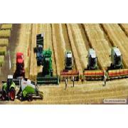 Предоставляем услуги по качественной уборке урожая