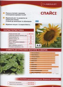 Гібрид соняшнику Спайсі Лабуле (Laboulet) євро-лайтінг