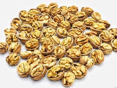 Продаем на экспорт целый бойный орех (Wallnuts in shell) и ядро грецко