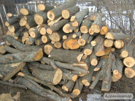 Дрова метрові та рубані Луцьк купити дрова в Луцьку твердих порід