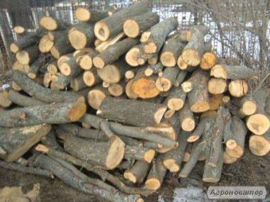 Дрова метровые и рубленые Луцк купить дрова в Луцке твердых пород