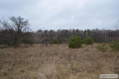 Продаж земельної ділянки, площа 0,94 га