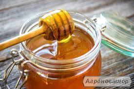 Закупівля меду за високими цінами
