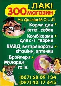 Корма для котов и собак
