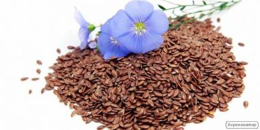 Семена льна масличного (Лен масличный, коричневый)