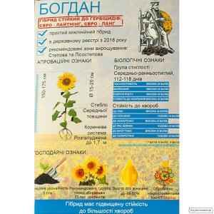 Насіння соняшнику Богдан (під Евролайтинг)