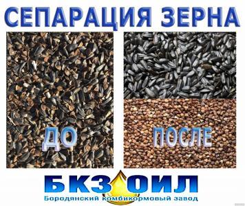 Поділ зернових культур, сортування зерна, сепарація зерна