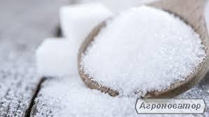 Продам цукор білий оптом!