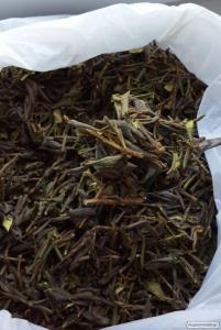 Лікарські трави Тибету від багатьох серйозних хвороб