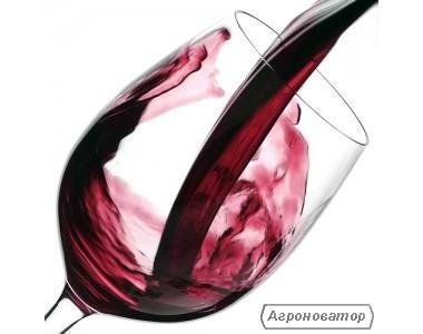 Натуральне домашнє вино оптом (від 50 л)