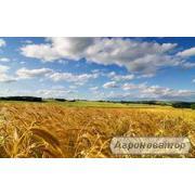 Агропредприятия и фермеры Украины. Производители.  2016 г.