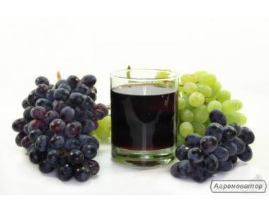 Оптовая продажа винограда и вина. Сорта на заказ.
