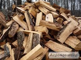 Продам дрова твердих порід