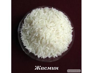 Продам рис в асортименті від імпортера