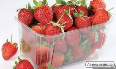 Пінетки пластикова для ягід малини, полуниці, ожини, чорниці та