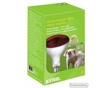 Лампа інфрачервона для обігріву потужністю 175 Вт