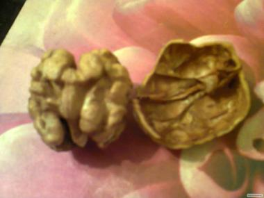 "Семена грецкого ореха ""Идеал"""