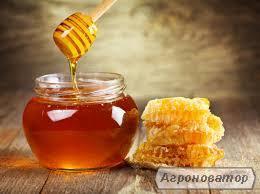 Продам мед оптом и в розницу.Гречишный,подсолнух-гречка, цветочный.