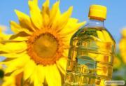 Подсолнечное масло рафинированное / нерафинированное на экспорт
