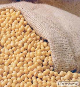 Соя не ГМО 100 тонн по першій формі
