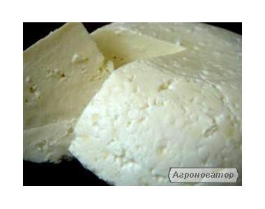 Козье молоко, творог и твёрдый сыр качотта.