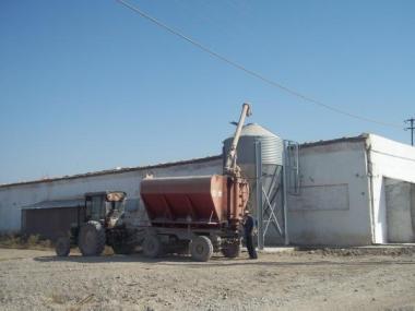 Система зберігання і транспортування корму