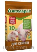 Акселерат для свиней (10 кг)