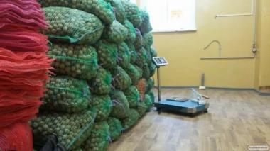 Продам волоський горіх урожаю 2015 року
