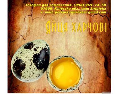 Перепелиные яйца пищевые и инкубационные