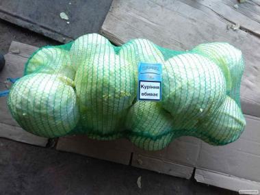 Продам капусту сорт Лангрима 3,9 грн\ кг