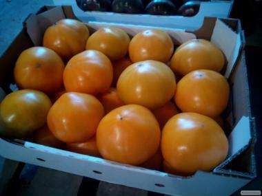 Продам жовтий, рожевий і червоний помідор
