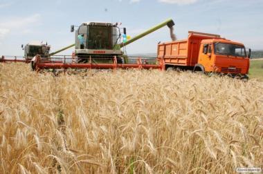 Оказываем услуги уборки урожая 2017
