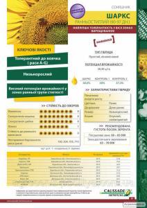 Семена подсолнечника Шаркс (Коссад Семанс)