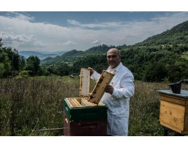Мед Высокогорья карпат honey-land.com.ua