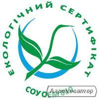 макаронні вироби з Києва