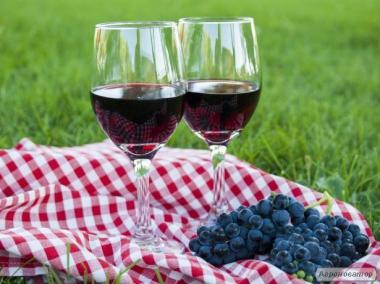 Домашнее вино виноградно-малиновое
