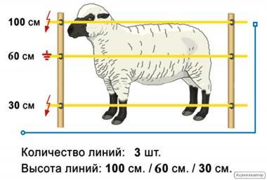 Электропастух для овец комплект на 0,7 га.