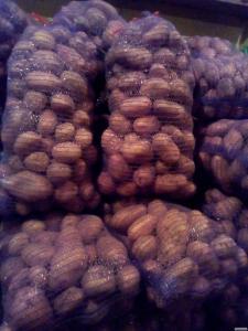 Продам картоплю домашню фото реальні, 5 тон сорт словянка, Ровенская о