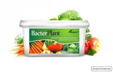 БактерПлант