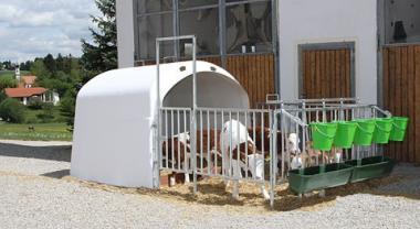 Будиночок для телят