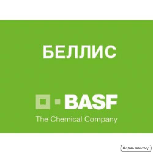 Фунгіцид Беллис (БАСФ)