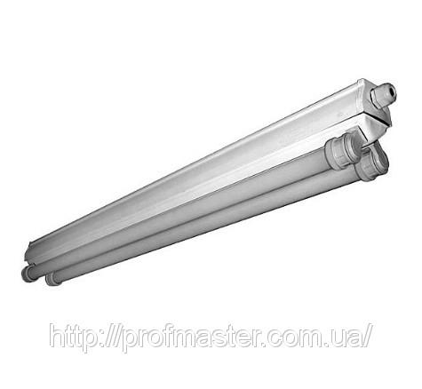 Светильник ПВЛМ, светильник ПВЛМ-2х40, ПВЛМ-2х36, пылевлагозащищенный
