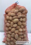 Крупный картофель оптом