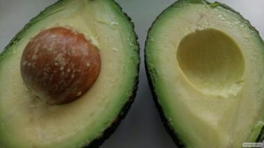 Саджанці авокадо