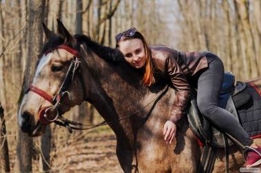 Продам коня (лошадь, мерин)